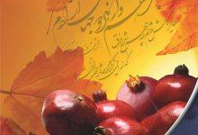 تصویر از فصلنامه خانواده مهر – شماره ۶