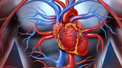 Photo of کلینیک آموزش خود-مراقبتی قلب